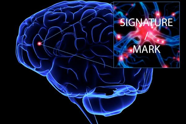 brain_signature_mark
