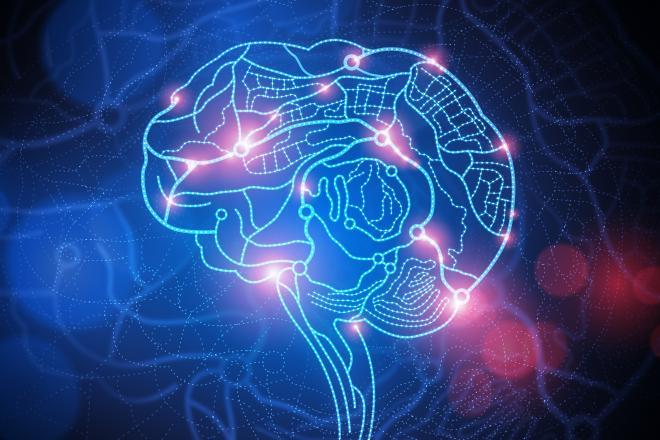 costescu neural model